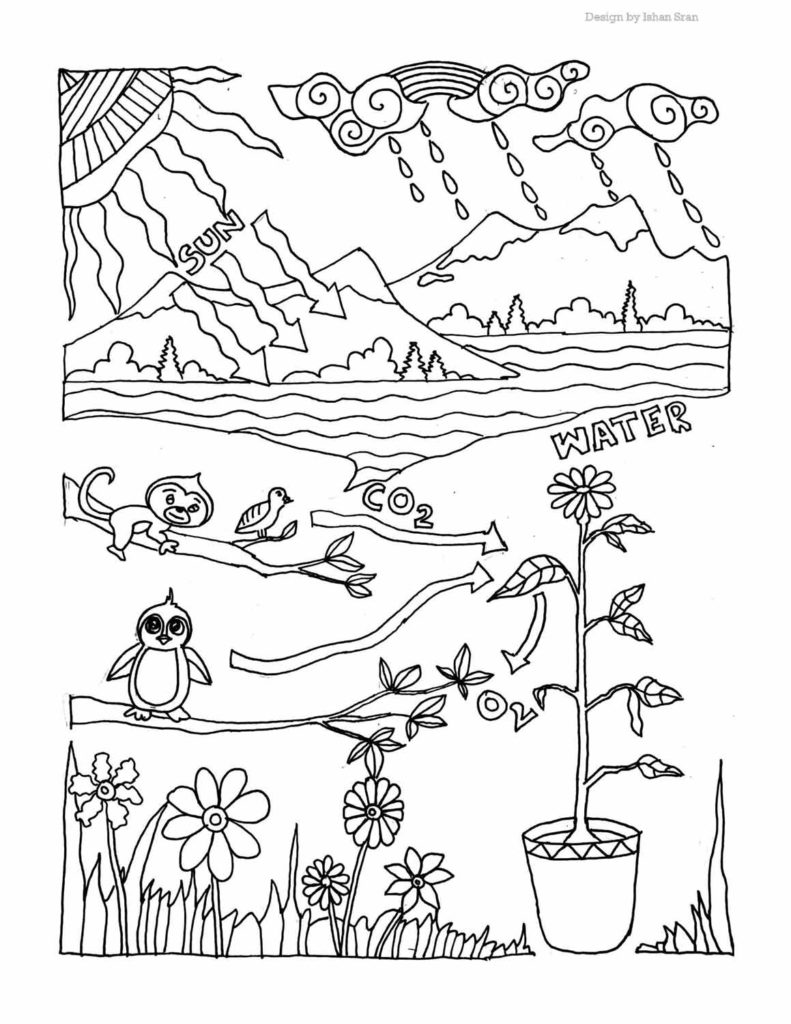 Biology Coloring Pages - Science Fest